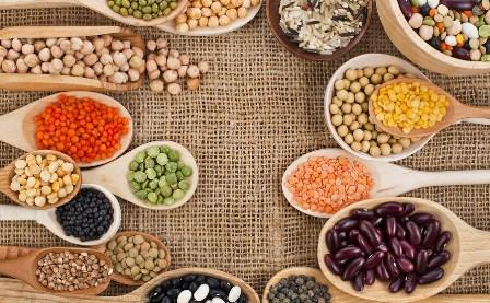 لیست مواد غذایی حاوی پروتئین گیاهی