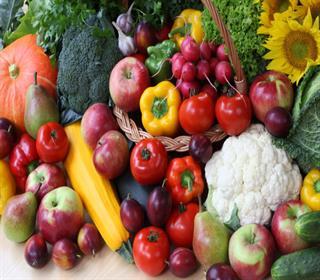 بهترین منابع گیاهی برای مبارزه با انواع بیماری ها