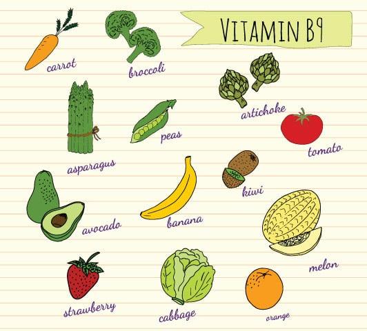مواد غذایی سرشار از ویتامین ب ۹ ( فولات )