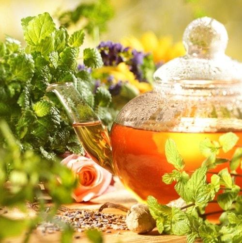 آیا گیاهان دارویی به کاهش وزن کمک می کند؟