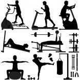 برنامه بدن سازی