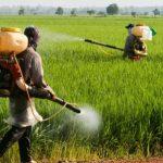 عوارض آفت کش ها بر سلامت کودکان
